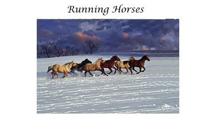 Running Horses card set